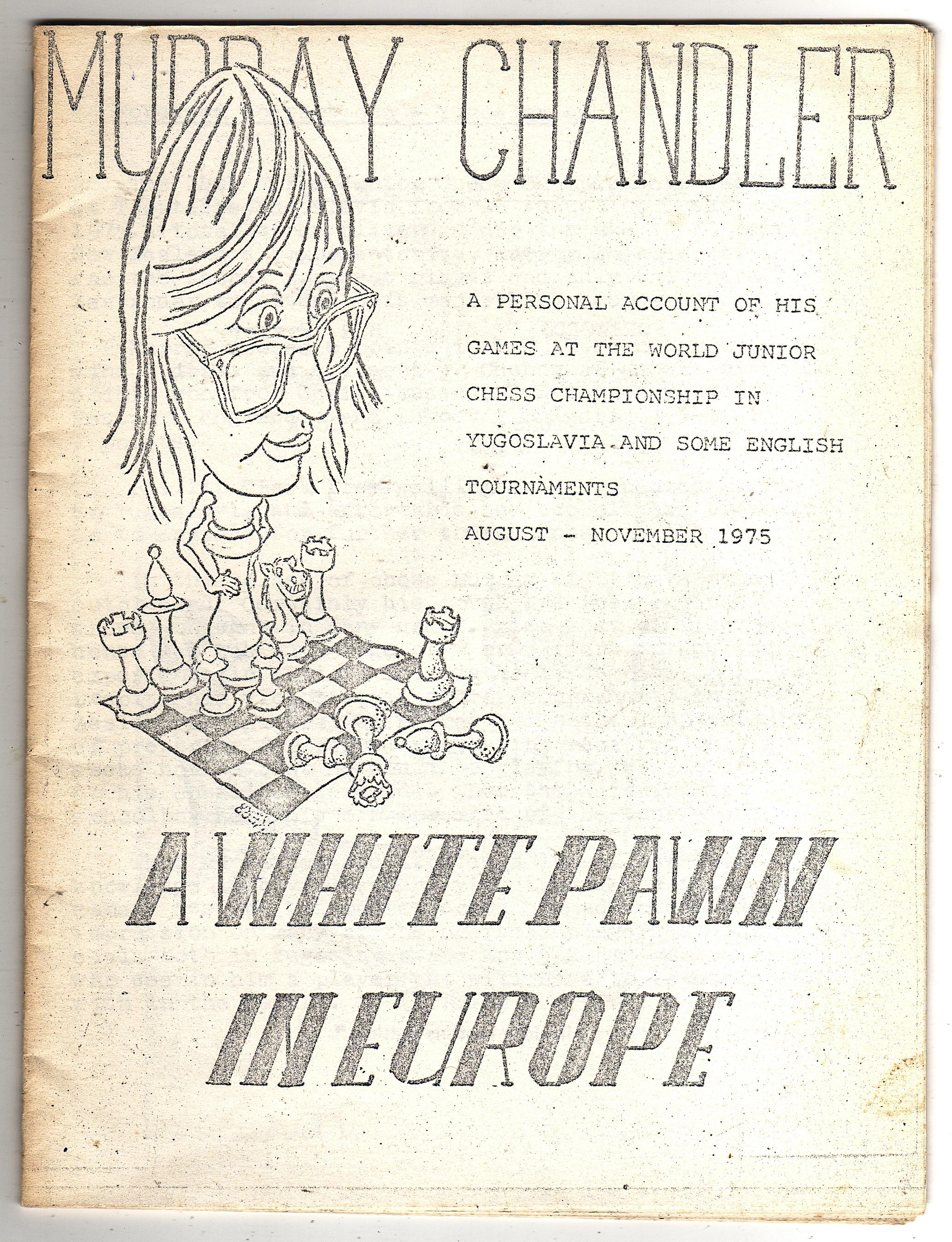 white pawn in europe001_lv.jpg